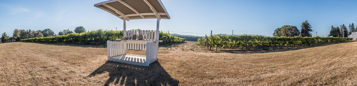 Corvallis U-Pick Grape Stand